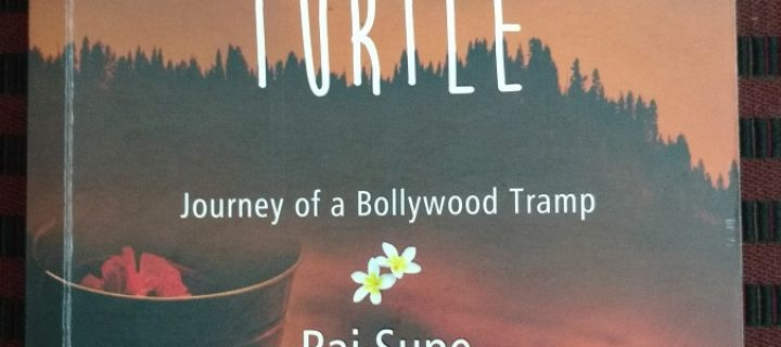 When Life Turns Turtle – Raj Supe
